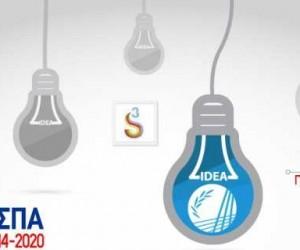 Επιμελητήριο Θεσπρωτίας: Ξεκινά στις 23 Μαρτίου η υποβολή αιτήσεων χρηματοδότησης για το Πρόγραμμα «Ερευνώ-Δημιουργώ-Καινοτομώ»