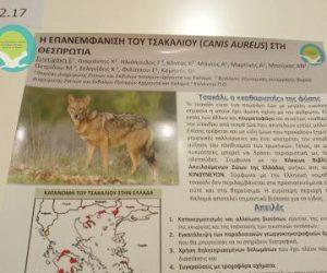 Θεσπρωτία: Συμμετοχή του Φορέα Διαχείρισης Στενών και Εκβολών ποταμών Αχέροντα και Καλαμά στο 8ο Πανελλήνιο Συνέδριο Οικολογίας