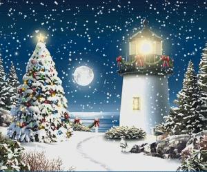 Ήγουμενίτσα: Σήμερα η πρώτη συνάντηση φορέων και εθελοντών για τον σχεδιασμό των εορτών των Χριστουγέννων