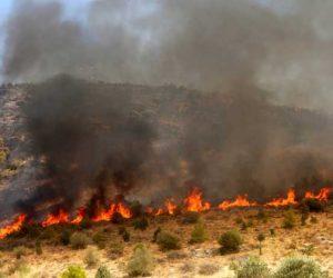 Θεσπρωτία: Πέρασαν στην ελληνική επικράτεια οι φωτιές της Αλβανίας-Επί ποδός οι δυνάμεις πυρόσβεσης στην Θεσπρωτία
